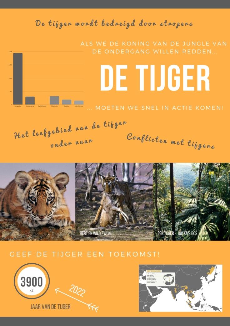 Biotopen infographic tijgers
